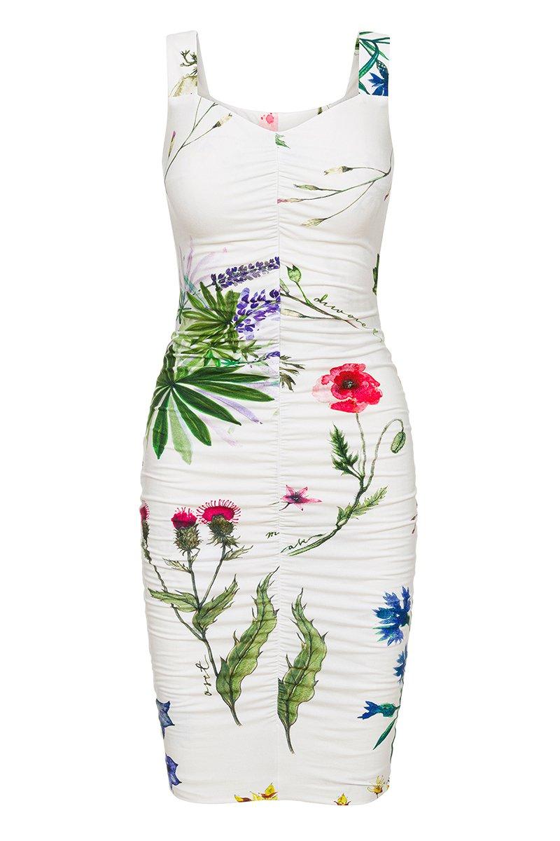 MALENA NA WAKACJACH kwiaty polskie
