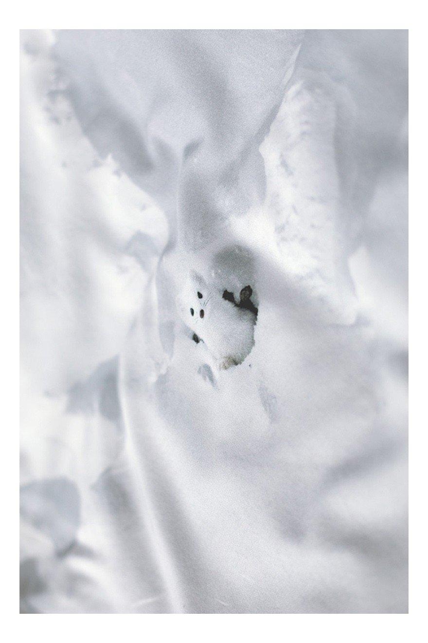 OBRUS śnieg